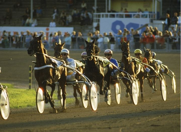 Trotters racing at Solvalla track near Stockholm, Sweden in sunset light