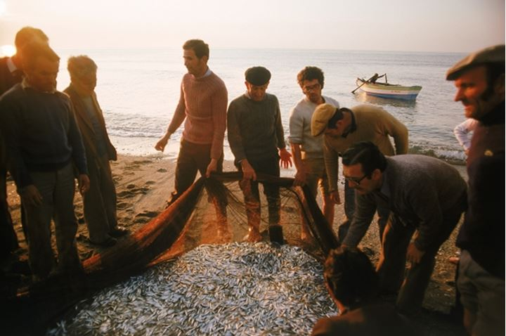 Spanish fishermen on sandy Mediterranean  shore at Costa del Sol with netted fish in morning light