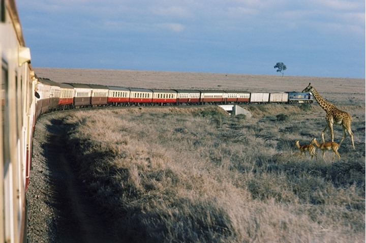 Train from Nairobi to Mombasssa passing giraffe and impalas in Kenya Africa