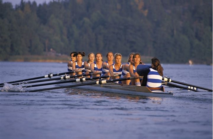 teamwork cooperation stockholms rowing club women team model released