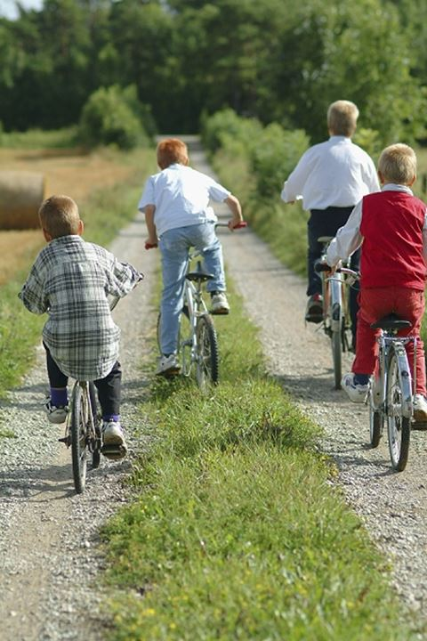 Rear view of children riding bicycles