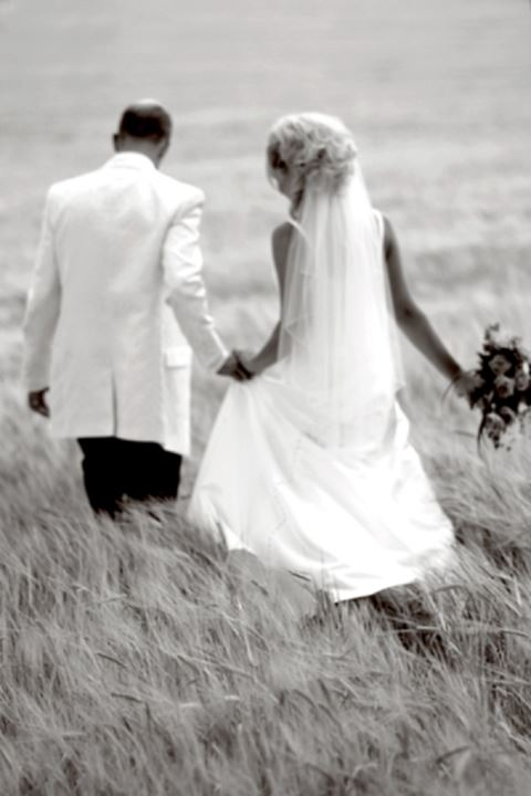 Rear view of a bridal couple walking in the field