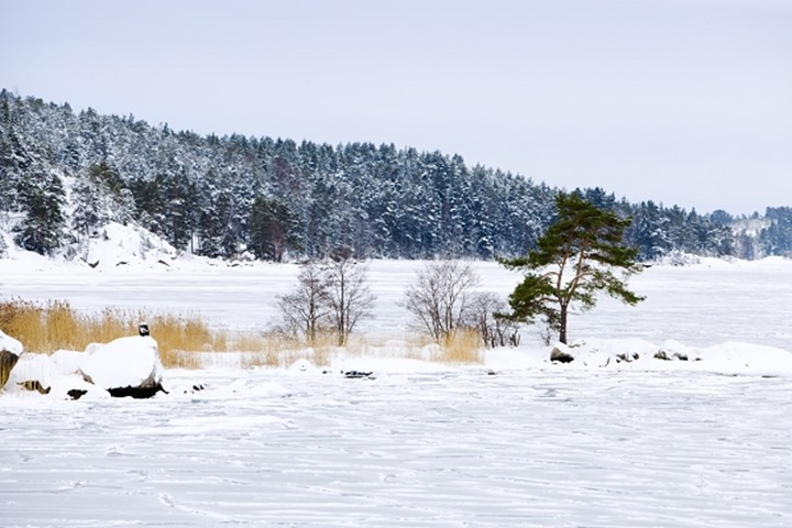 STOCKHOLM ARCHIPELAGO IN WINTER