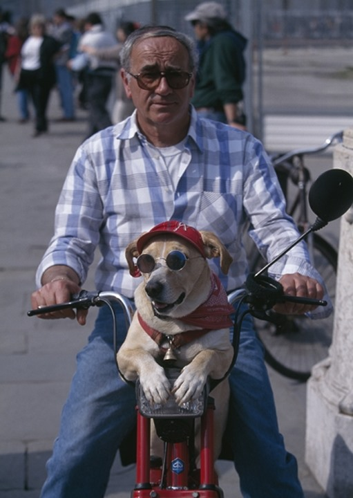 Man riding on a motor bike with a dog Italien