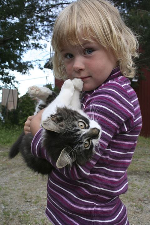 Girl looking at camera whilst holding a domestic cat