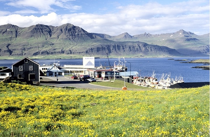 Iceland, Mustard field and resort at seashore with mountains