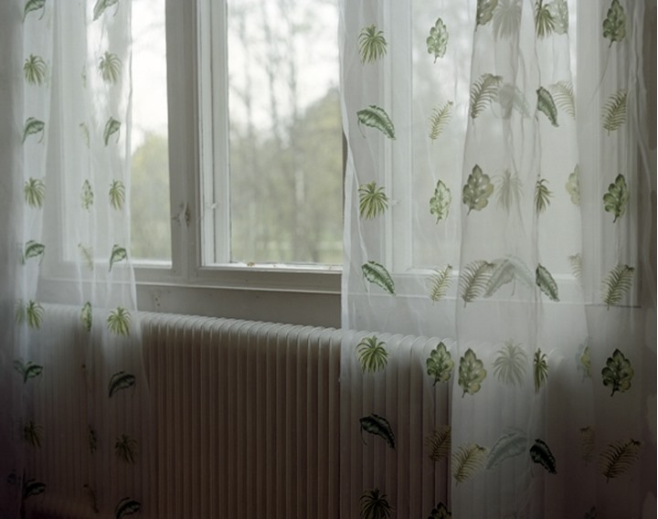 Curtains hanging on a window