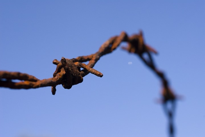 Old rusty barbed wite