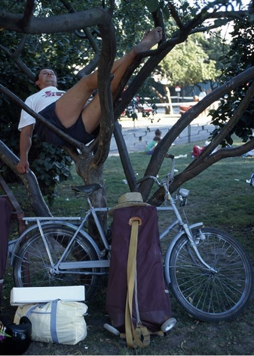 Bicycle tourist rests in a tree, Stockholm