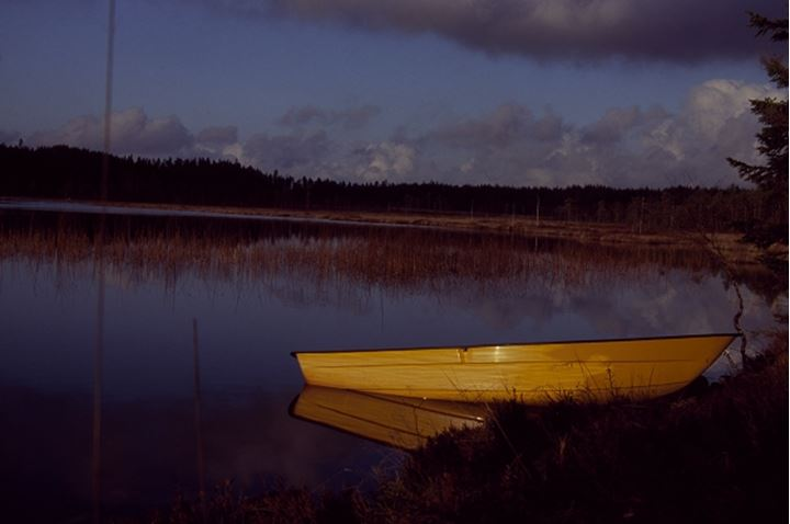 Yellow boat standing at the bank of a river