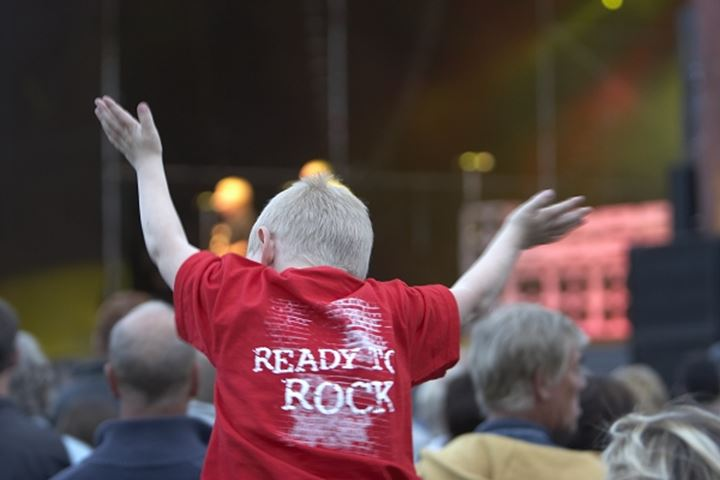 Rear view of a boy cheering at an outdoor concert