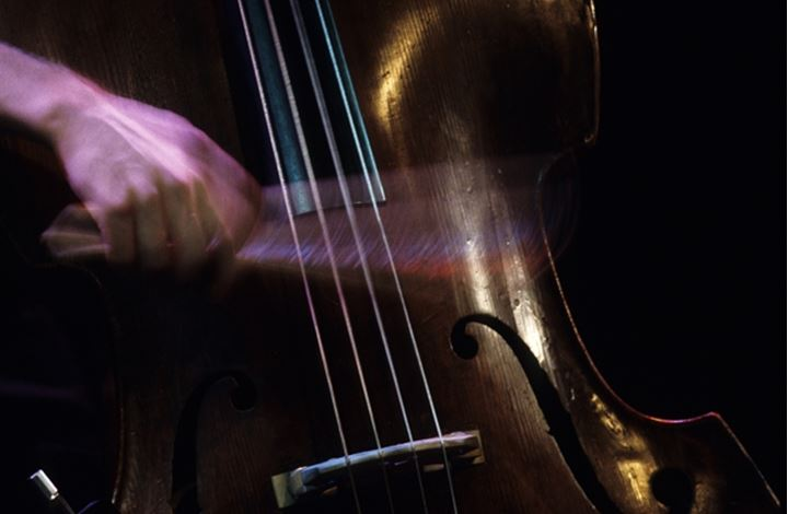 Mid section view of a person playing the violin