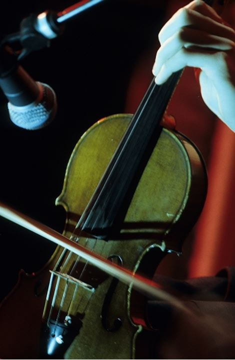 Close-up of a person's hand playing the violin