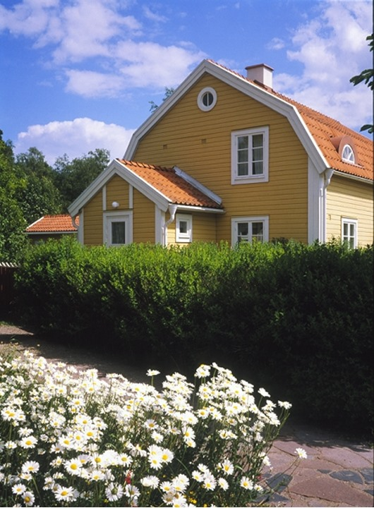 Flowering plants in front of a house