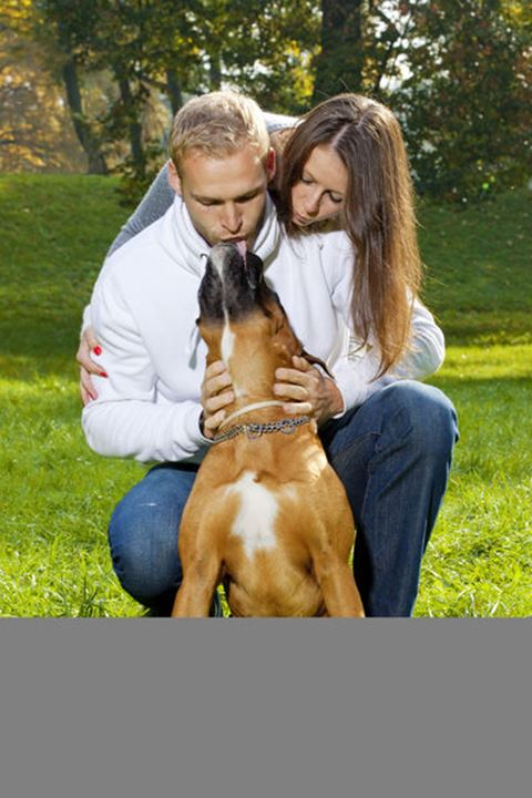 Happy Young Couple Playing with their Dog in the Park.
