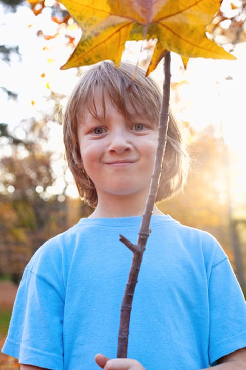 Portrait of a Boy Holding a Brown Leaf Outdoors