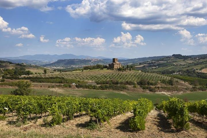 Umbria, Italy landscape with city Orivieto in the background.