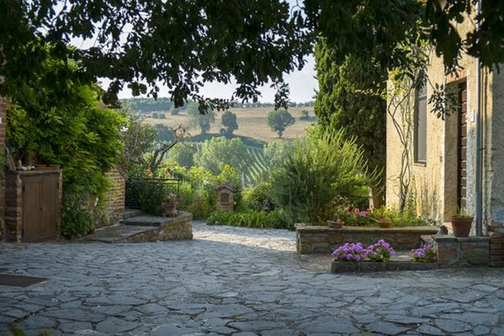 Home Garden at a house in Tuscany Italy.