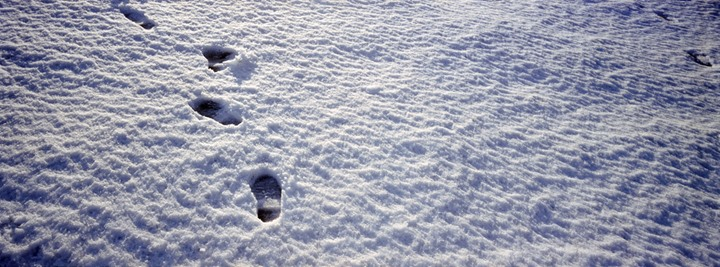 Footprints on snow